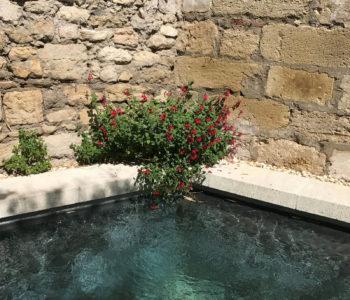 N°15-Avignon-piscine-1